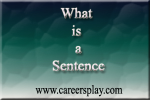 What is a sentence, definition with example?